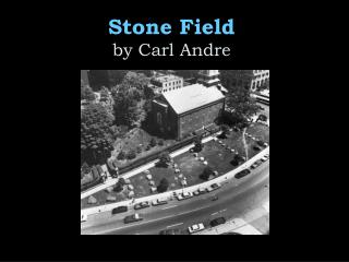 Stone Field  by Carl Andre