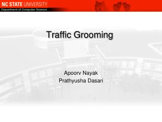 Traffic Grooming