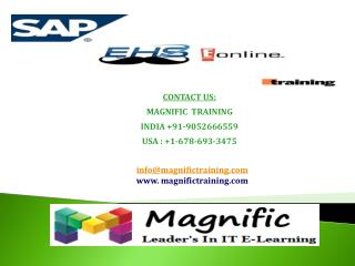 sap ehs online training in Dubai