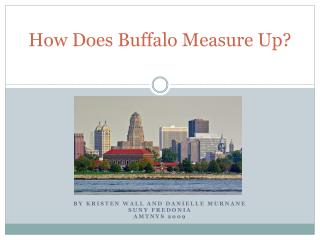 How Does Buffalo Measure Up?