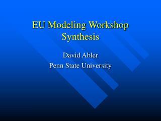 EU Modeling Workshop Synthesis