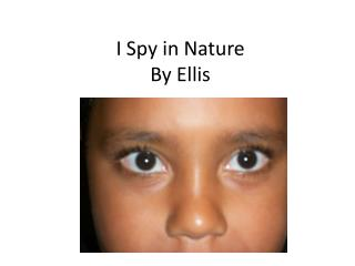 I Spy in Nature By Ellis