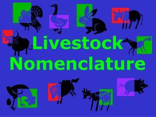 Livestock Nomenclature