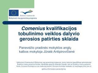 Comenius  kvalifikacijos tobulinimo veiklos dalyvio gerosios patirties sklaida