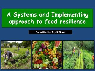 A Systems and Implementing approach to food resilience