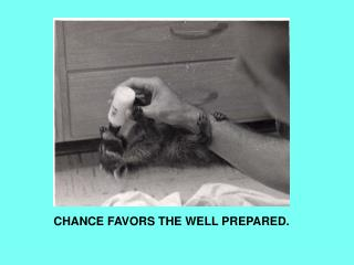 CHANCE FAVORS THE WELL PREPARED.
