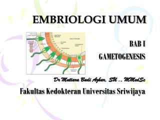 EMBRIOLOGI UMUM