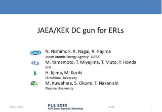 JAEA/KEK DC gun for ERLs