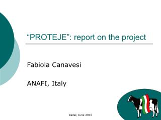 """PROTEJE"": report on the project"