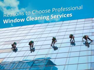 Professional Window Cleaning in Boise