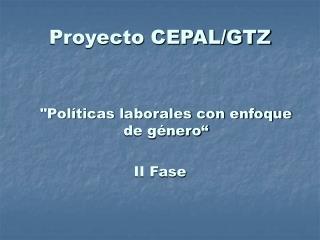 Proyecto CEPAL/GTZ
