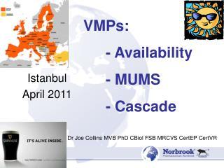 Istanbul April 2011