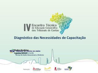 Diagnóstico das Necessidades de Capacitação Pedro Koshino Agosto/2013