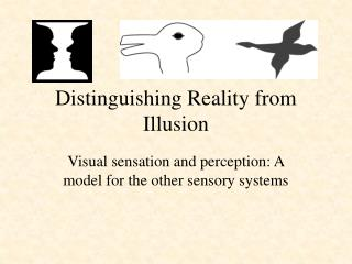 Distinguishing Reality from Illusion