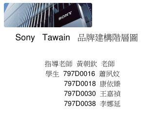 Sony Tawain    品牌建構階層圖