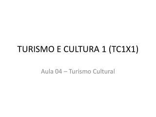 TURISMO E CULTURA 1 (TC1X1)
