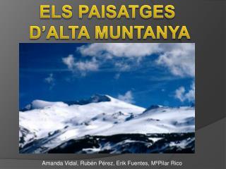 ELS PAISATGES  D'ALTA MUNTANYA