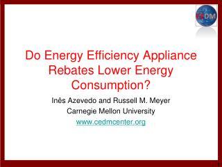 Do Energy Efficiency Appliance Rebates Lower Energy Consumption?