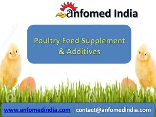 Best Manufacturer & Exporter Poultry Feed Supplements Produc