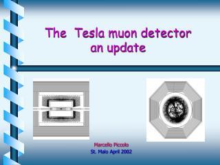 The  Tesla muon detector           an update