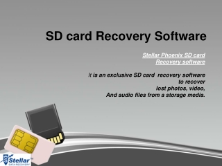 Learn how to recover deleted pictures from SD card