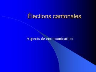 Élections cantonales