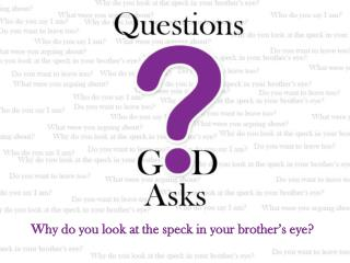 Why do you look at the speck in your brother's eye?