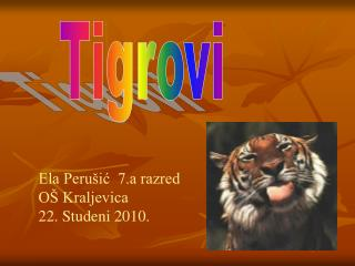 Tigrovi