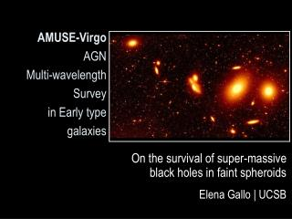 AMUSE-Virgo AGN Multi-wavelength Survey in Early type galaxies