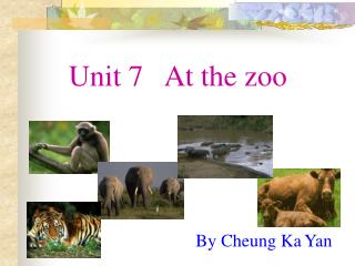 Unit 7   At the zoo