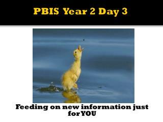 PBIS  Year 2 Day 3