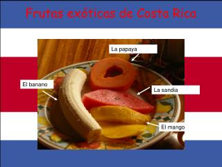 Frutas ex ó ticas de Costa Rica