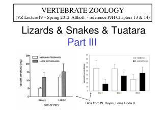 Lizards & Snakes & Tuatara  Part III