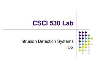 CSCI 530 Lab