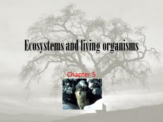 Ecosystems and living organisms