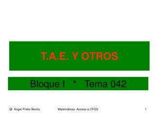 T.A.E. Y OTROS