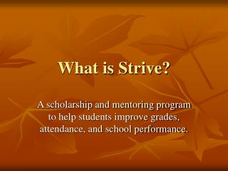 What is Strive?