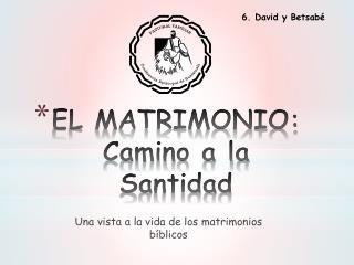 EL MATRIMONIO: Camino a la Santidad
