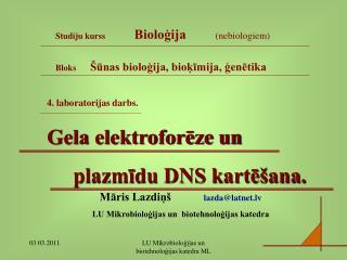 4. laboratorijas darbs. Gela elektroforēze un      plazmīdu DNS kartēšana.