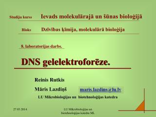 8. laboratorijas darbs. DNS gelelektroforēze.