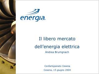 Il libero mercato  dell'energia elettrica  Andrea Brumgnach