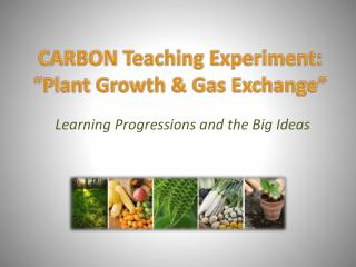 "CARBON Teaching Experiment:  ""Plant Growth & Gas Exchange"""