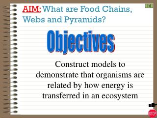 AIM: What are Food Chains,                Webs and Pyramids?