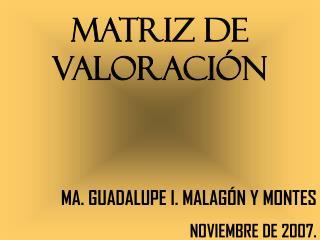 MATRIZ DE VALORACIÓN MA. GUADALUPE I. MALAGÓN Y MONTES NOVIEMBRE DE 2007.