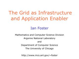 The Grid as Infrastructure and Application Enabler
