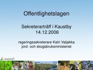 Finlands grundlag (731/1999)