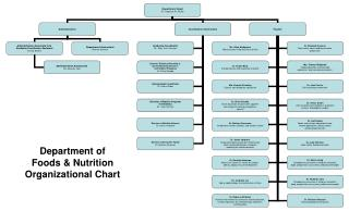 Department of  Foods & Nutrition Organizational Chart