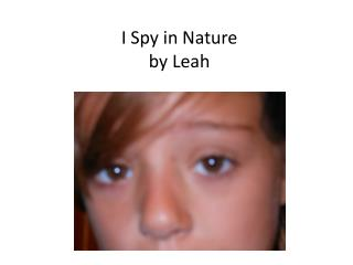 I Spy in Nature by Leah