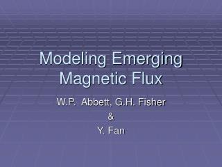 Modeling Emerging Magnetic Flux