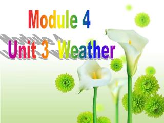 Module 4  Unit 3  Weather